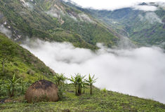 巴布亚传统村庄 免版税图库摄影