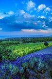 巴拉顿山地的颜色 免版税库存照片