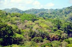 巴拿马运河的风景 库存图片