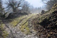 巴斯克国家(地区)森林范围urbasa 免版税库存照片