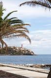 巴斯蒂亚,地平线,城堡,老镇,棕榈树,可西嘉岛, Corse,盖帽Corse,欧特Corse,法国,欧洲,海岛,夏天 免版税库存照片