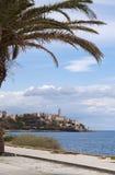 巴斯蒂亚,地平线,城堡,老镇,棕榈树,可西嘉岛, Corse,盖帽Corse,欧特Corse,法国,欧洲,海岛,夏天 库存图片