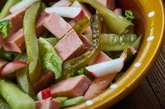 巴法力亚香肠Salat 库存照片