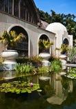 巴波亚植物的大厦公园 库存图片