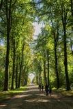 巴落克式样奥古斯图斯堡城堡的公园是其中一洛可可式的第一重要创作在Bruhl在波恩,北部莱茵河威斯特法利附近 库存图片
