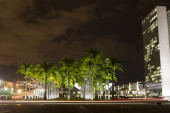巴西国会国民 库存图片