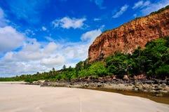 巴西海岸线 免版税图库摄影