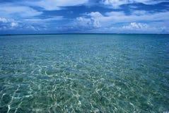巴西清楚的水晶maragogi海运 库存照片