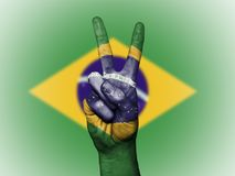 巴西爱国国旗 库存例证