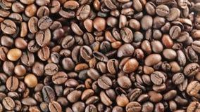 巴西生物咖啡豆 股票视频
