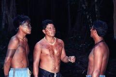 巴西的新当地印地安人 免版税库存照片