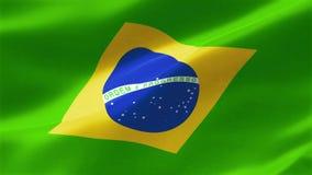 巴西的旗子 库存例证