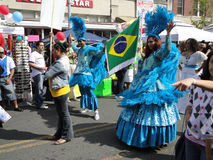 巴西进位标志 免版税库存图片
