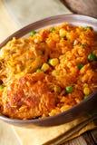 巴西食物:鸡肉和大米在a的Galinhada Mineira特写镜头 图库摄影