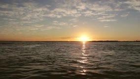 巴西,潘塔纳尔湿地-日出 五颜六色的天空 股票视频
