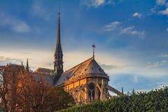巴黎圣母院与拱式扶垛的大教堂门面和在温暖的华丽哥特式尖顶东部门面的细节  库存图片