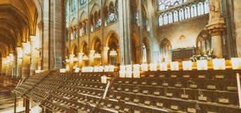 巴黎,法国- 2012年12月:著名Notre Dame猫内部  免版税库存图片