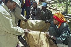 市场供营商卖皮革埃赛俄比亚的市场 免版税图库摄影
