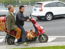 去市场卖鸡。 免版税图库摄影