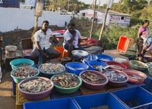 市场在卖和买在冰袋的果阿鲜鱼 库存图片