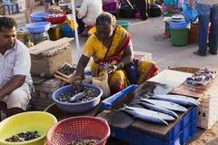 市场在卖和买在冰袋的果阿鲜鱼 免版税图库摄影
