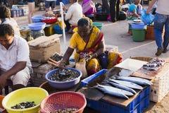 市场在卖和买在冰袋的果阿鲜鱼 库存照片