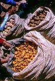 市场秘鲁 免版税库存照片