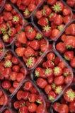 市场草莓 库存照片