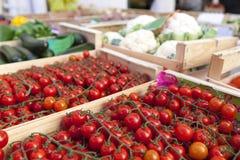 市场菜 库存照片