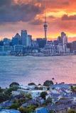 市奥克兰,新西兰 免版税库存照片