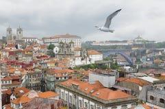 市的全景波尔图葡萄牙 图库摄影