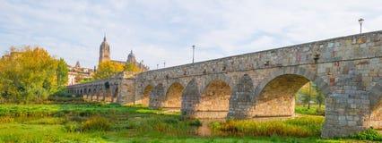 市的罗马桥梁萨拉曼卡在阳光下 免版税库存照片