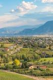 市看法Penticton在与葡萄园和果树园的夏天 库存图片