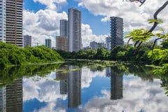 市巴西-累西腓 库存照片