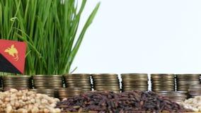 巴布亚新几内亚沙文主义情绪与堆金钱硬币和堆麦子 股票录像