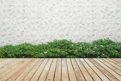 布什砖墙和木头地板背景 库存图片