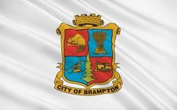 布兰普顿安大略,加拿大旗子  免版税库存图片