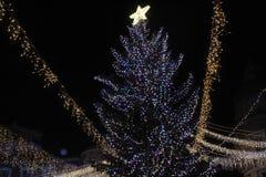 布加勒斯特圣诞灯 免版税图库摄影