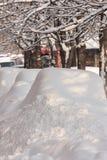 布加勒斯特罗马尼亚- 2月14日: 天气反常现象 库存照片