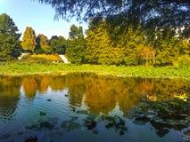 布加勒斯特马戏公园 免版税库存图片
