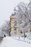 布加勒斯特,罗马尼亚- 1月17 :在Janua的Calea Victoriei街 库存图片