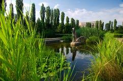 布加勒斯特-植物园 免版税库存图片