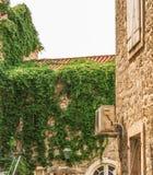 布德瓦,黑山老镇的大厦的片段  这个cit的第一提及 免版税库存图片