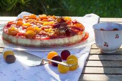 布拉斯李树乳酪蛋糕–鲜美水多的夏天蛋糕 免版税库存照片