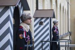 布拉格城堡卫兵 免版税库存照片