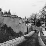 布拉格城堡,圣Vitus,布拉格大教堂  库存图片
