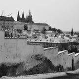 布拉格城堡,圣Vitus,布拉格大教堂  免版税库存照片