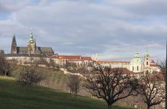 布拉格城堡,从Petrin小山的圣Vitus大教堂看法  布拉格 cesky捷克krumlov中世纪老共和国城镇视图 免版税库存图片