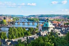 布拉格桥梁在夏天 免版税图库摄影