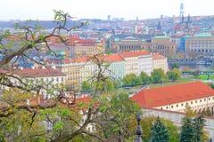 布拉格看法从高度的布拉格城堡 库存照片